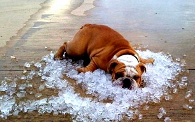 ПОГОДА: синоптики попереджають про сильну спеку в Україні 2-3 серпня