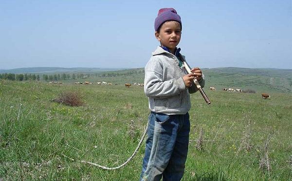 У сусідніх областях міських школярів перетворюють на хлопців із села