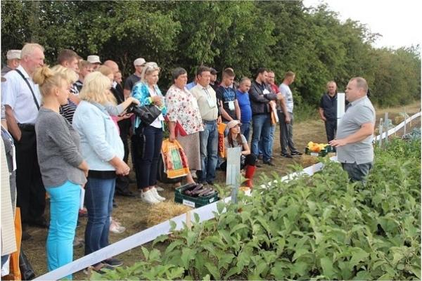 Сім'я фермерів Стефанюків  із Дунаєва вчилася, вчилася і вивчилася