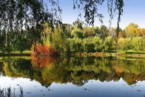 У  Раю на Тернопільщині буде русалка (Фотофакт)