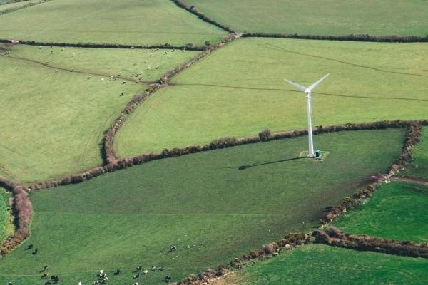 Україна й ОАЕ разом працюватимуть над проектами «чистої» енергетики