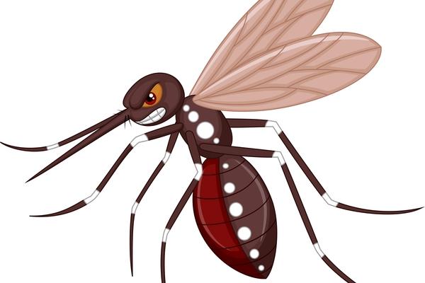«Кляті піндоси»: Настоятель Лаври розповів, як Америка заражає комарів хворобами