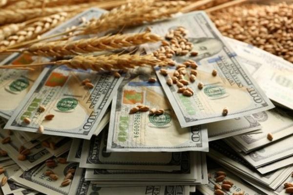 Куди вкладати гроші в Україні?