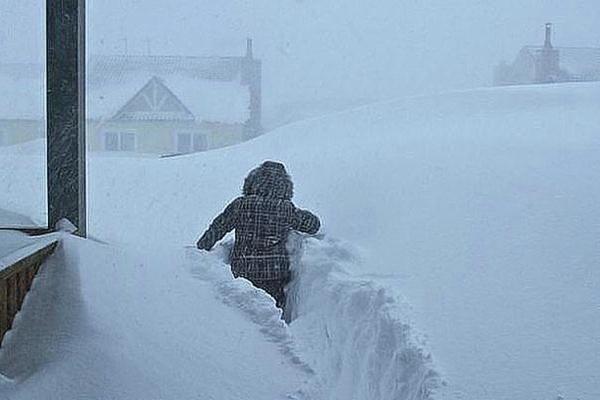 Справжня зима: стало відомо, якою буде погода в Україні на Новий рік (Відео)