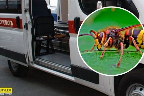 Не довезли до лікарні: чоловік загинув після укусу комахи