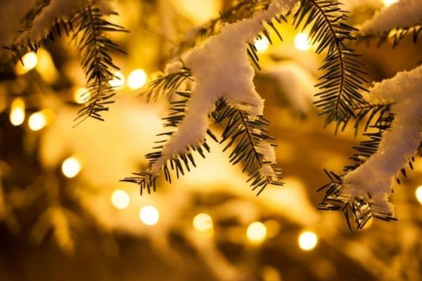 Снігу не буде: синоптик розповів про погоду на Новий рік