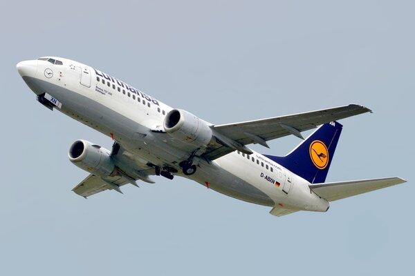 В Ірані розбився український літак із 167 пасажирами на борту: Всі деталі страшної трагедії (Фото, відео)