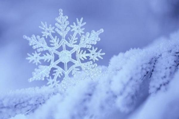 Чи чекати «дива»: Синоптики розповіли про вірогідність сильних морозів і снігопадів цієї зими в Україні