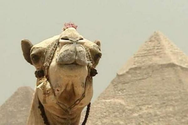 З першого червня Єгипет вводить туристичні візи