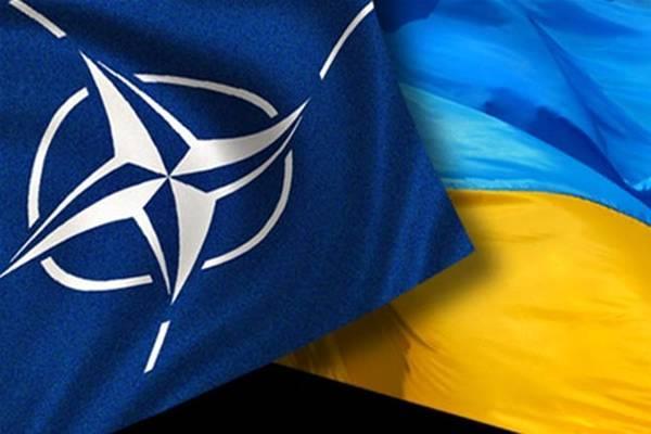 НАТО крок за кроком просуває інтеграцію України та Грузії