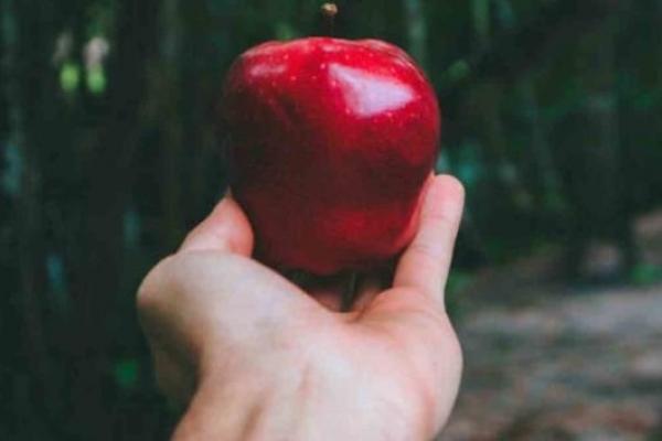 Компроміс і маленькі кроки: як непомітно гріх приходить у наше життя