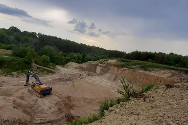 У сільському кар'єрі на Лановеччині розкопали кістки мамонта
