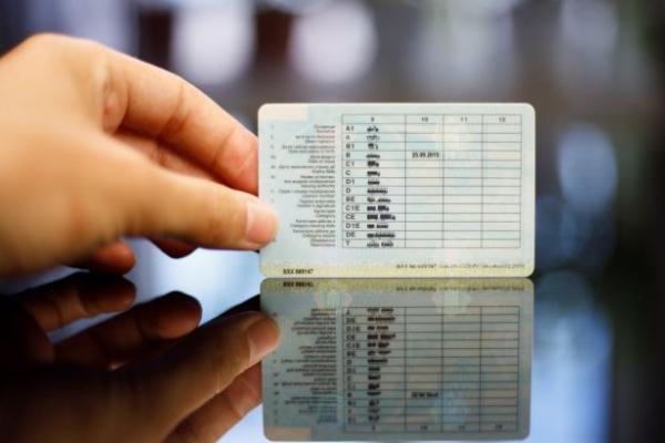 Як швидко обміняти водійські права: українцям дали корисні поради